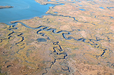 Aerial view of estuary and saltmarsh in autumn, Delaware Bay, New Jersey, USA