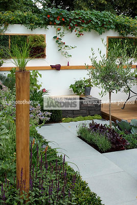 Allotment, Contemporary garden, garden designer, Mini pond, Mini potager, Mini Vegetable garden, Olive tree, Pavement, Small garden, Tropaeolum majus, Urban garden, Vegetable patch, Vegetable plot, Very small pond,