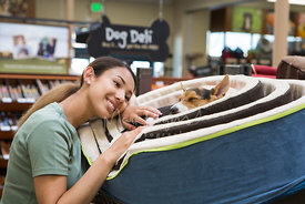 Pretty Young Woman Smiling at Sleeping Dog in Dog Bed