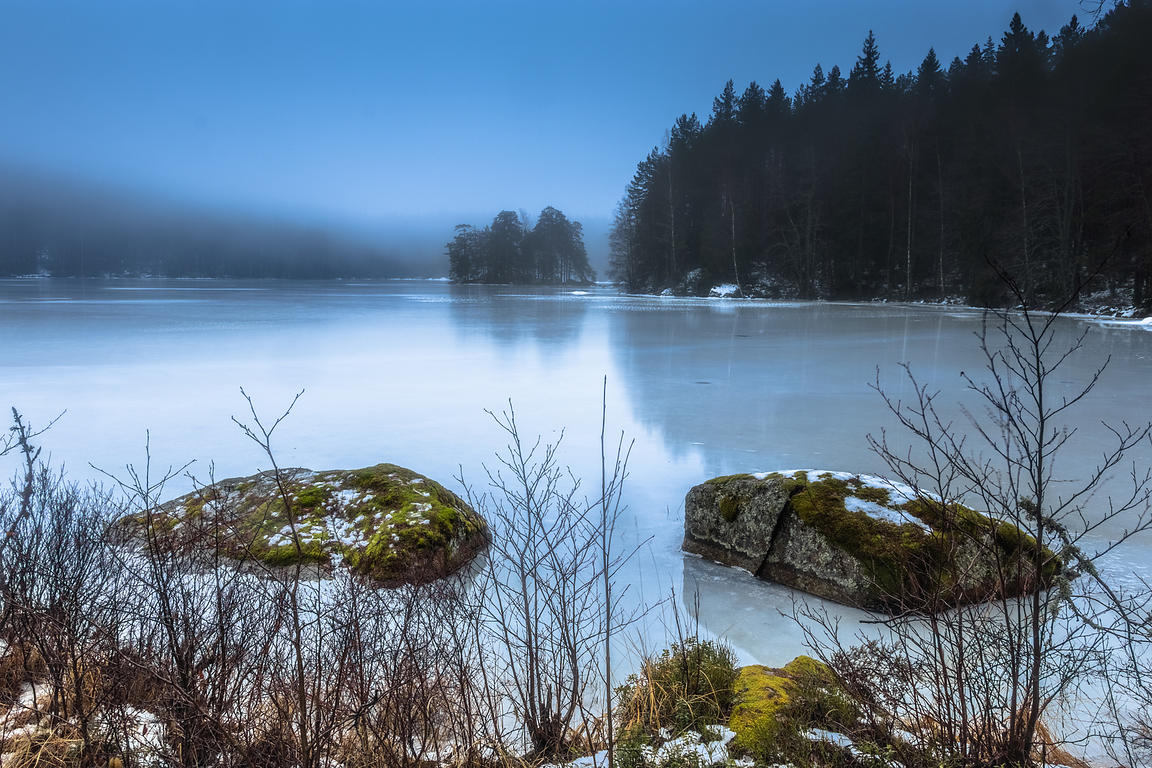 Frozen lake and forest in mist and haze