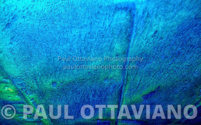Aqua Wash | Paul Ottaviano Photography