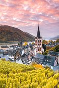 Sunrise over vineyards and river Rhine, Bacharach, Germany