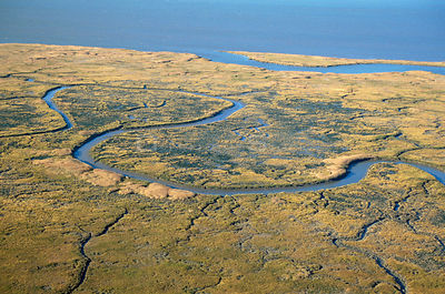 Aerial view of saltmarsh in autumn. Delaware Bay, New Jersey, USA