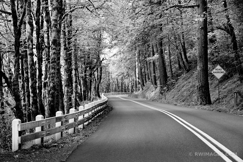 HISTORIC COLUMBIA RIVER HIGHWAY COLUMBIA RIVER GORGE OREGON BLACK AND WHITE