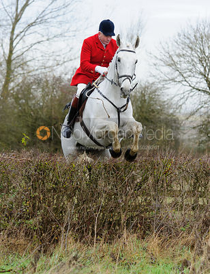 Andrew Osborne MFH jumping a hedge near Mrs Wilson's covert