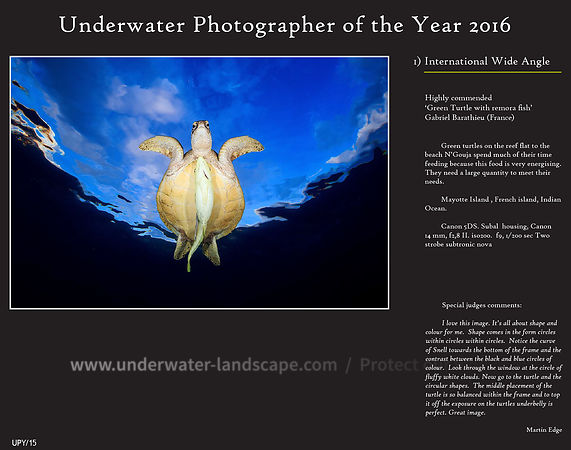 Underwater Photographer of the Years 2016