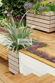 Aromatic plant, Container, garden designer, Perennial, Stair, Terrace, Thyme, Window box, Contemporary Terrace, Digital, Silv...