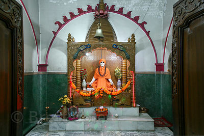 Unidentified idol in a temple in Haridwar, India