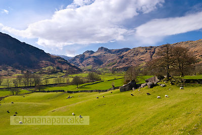 The Langdale Valley - BP1030