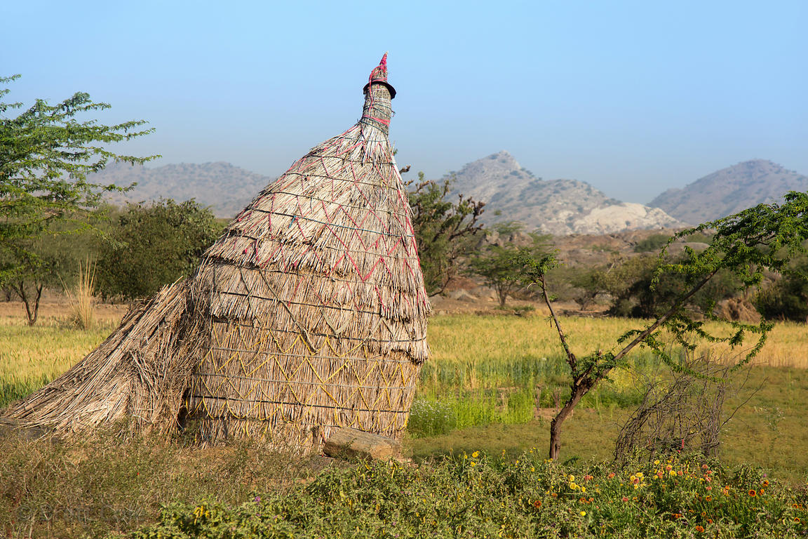 Thatched storage hut on a farm in Khana Kheri village, Rajasthan, India