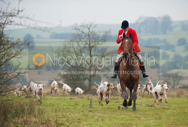 Meynell and South Staffordshire Hunt at Wootton Hall 31/1