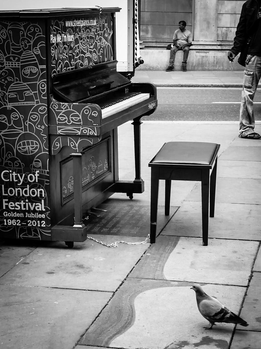 Piano and Pigeon