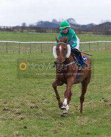 Mezara (Laura Werner), Charity Flat Race, Div I - The Quorn at Garthorpe 21st April 2013.