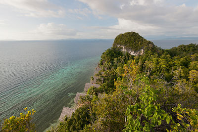 Clifftop view from Pulau Pef, Raja Ampat near Waigeo, Indonesia, February 2012