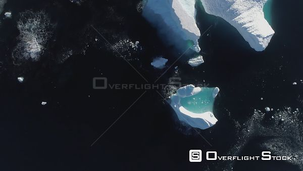 Ice and bergs Rada Cavadonga Bay Antarctica