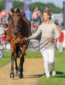 Rebecca Howard and RIDDLE MASTER - The final trot up, Burghley Horse Trials 2013.
