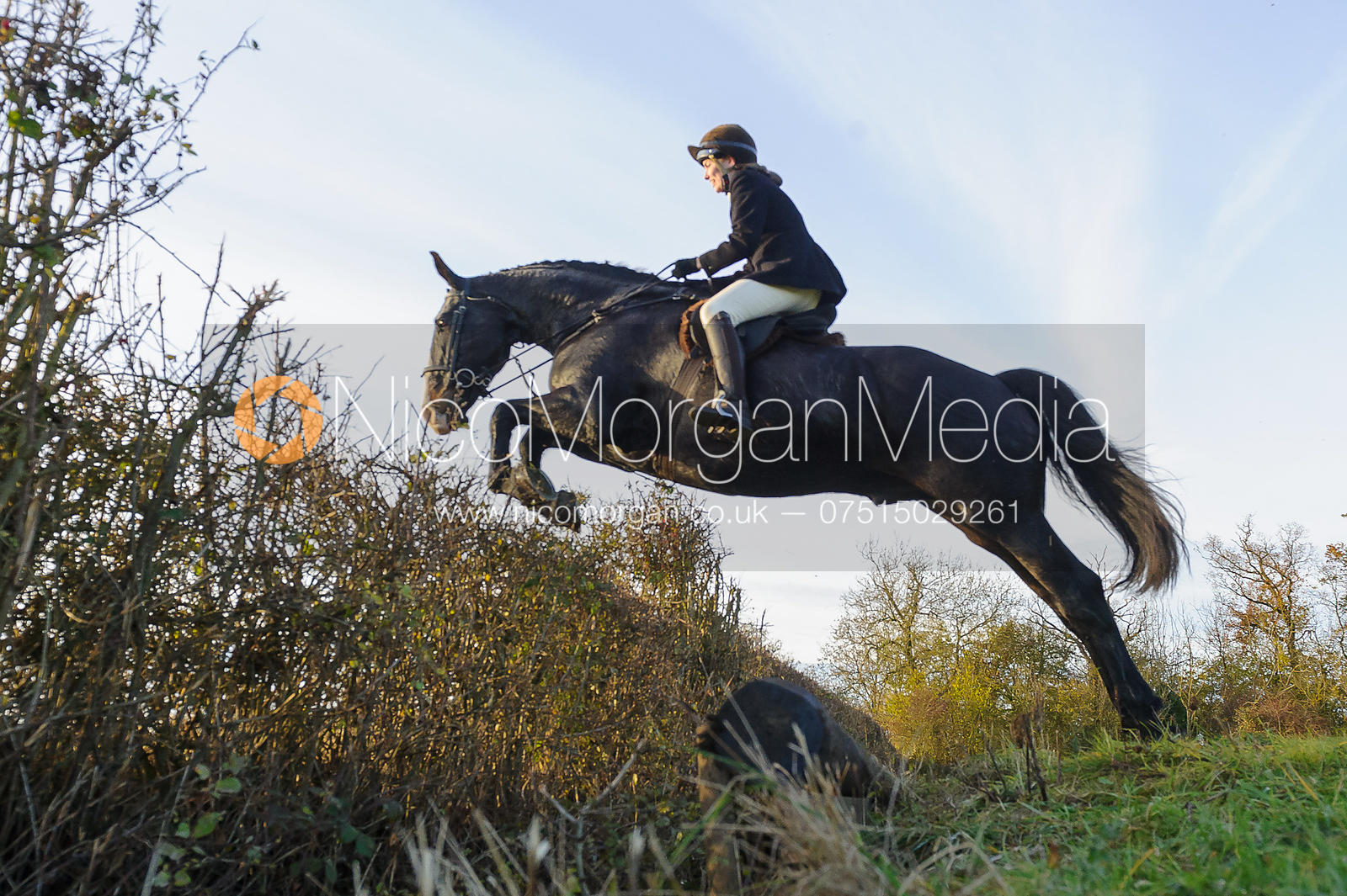 Harry Amelia jumping a hedge on line 3