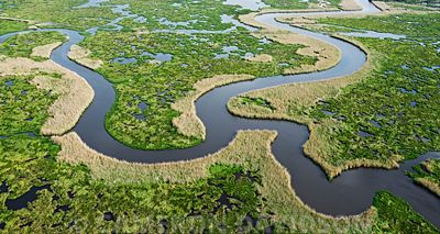 Aerial Photo, Wetlands, Louisiana