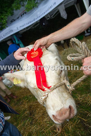 19th August, 2015.The 74th Virginia Agricultural Show, Virginia, County Cavan. Pictured is former Mongahan GAA manager Seamus...