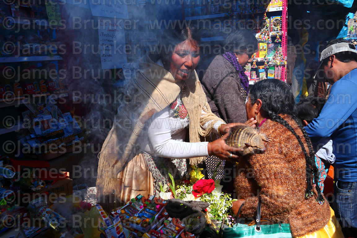 Aymara shaman blessing person with a live Andean hairy armadillo (Chaetophractus nationi) in market at Alasitas festival, Pun...
