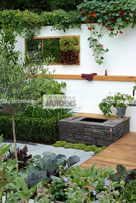 Allotment, Contemporary garden, garden designer, Mini pond, Mini potager, Mini Vegetable garden, Small garden, Urban garden, Vegetable patch, Vegetable plot, Very small pond,