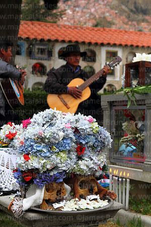 Man playing guitar in cemetery as tribute to skulls, Ñatitas festival, La Paz, Bolivia