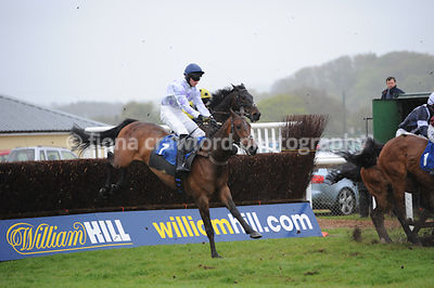 The Newton Abbot Novices' Steeple Chase