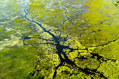 Aerial view of the Okavango delta, Botswana, May 2010.