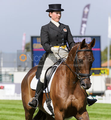 Alex Postolowsky and ISLANMORE GINGER - dressage phase,  Land Rover Burghley Horse Trials, 5th September 2013.
