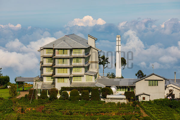 View of the Historic Heritance Tea Factory Hotel