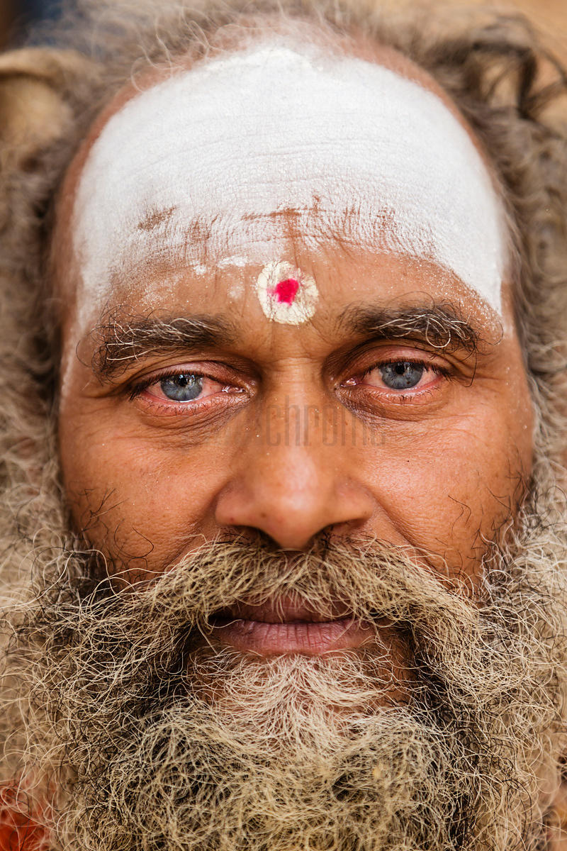 Portrait of a Blue-eyeded Sadhu