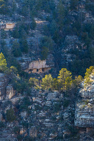 Ancient cliff dwelling rooms in rock face, Walnut Canyon National Monument, Flagstaff, Arizona, USA, February 2015.