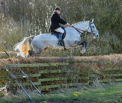 Nick Wright jumping a hedge at Town Park Farm - The Cottesmore at Town Park Farm