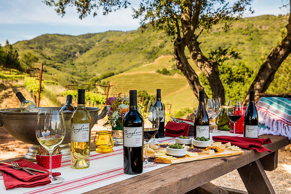 Commercial wine lifestyle photoshoot on location in Sonoma Valley by Jason Tinacci