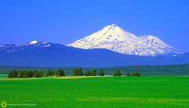 Shasta from Red Rock Valley