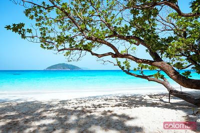 Tropical beach, SImilan islands, Thailand