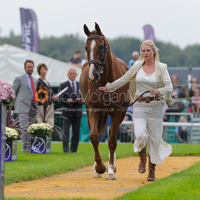 Roo Fox and FLEET STREET - The first vets inspection (trot up),  Land Rover Burghley Horse Trials, 3rd September 2014.