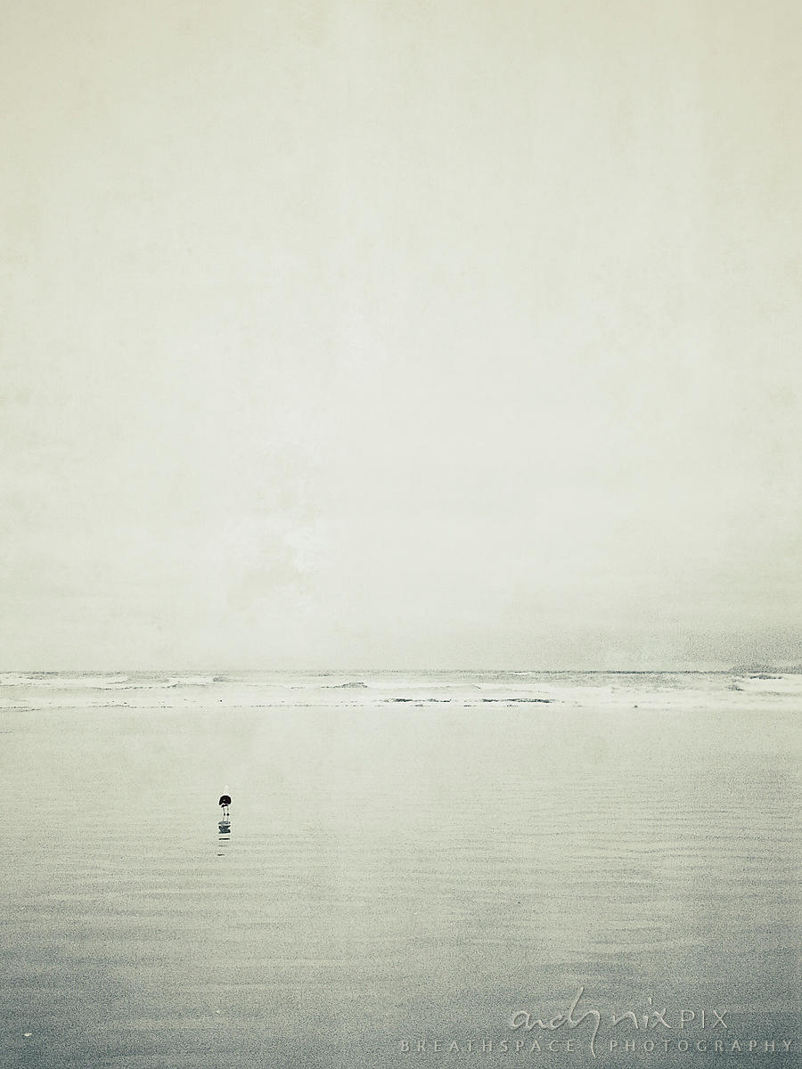Alone: Earth (series)