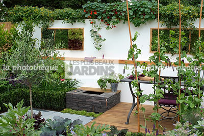 Allotment, Contemporary garden, garden designer, mangetout, Mini potager, Mini Vegetable garden, Olive tree, Small garden, Tropaeolum majus, Urban garden, Vegetable patch, Vegetable plot, Wooden Terrace, Digital, Foliage wall, Green wall, Vegetation wall,