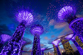 'Gardens by the Bay' Singapore 2016: Photographer: Neil Emmerson