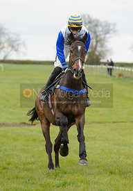 MY SYNTAX (Richard Collinson) - Race 5 - The Quorn Point-to-Point 2017