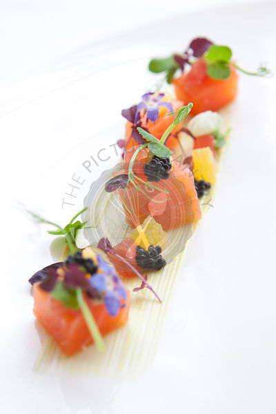 Citrus cured organic salmon, avocado puree, sevruga caviar