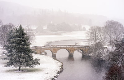 Winter's morning at Chatsworth