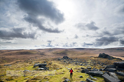 BP2000 - Walker at Belstone Tor, Dartmoor