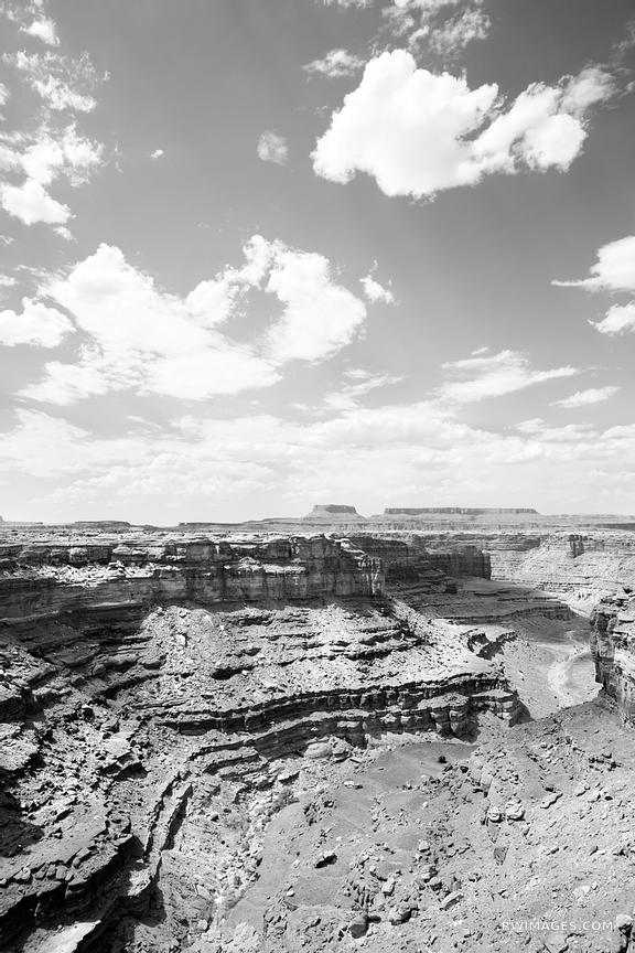 VIEW FROM SLICK ROCK TRAIL THE NEEDLES CANYONLANDS NATIONAL PARK UTAH BLACK AND WHITE VERTICAL