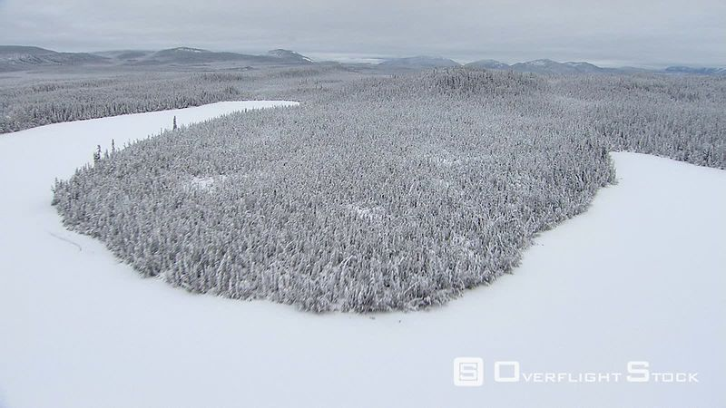 Flying across snowy, forested peninsula in Alaska