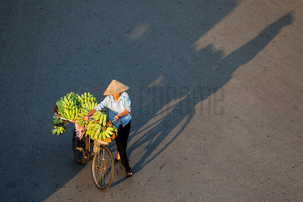 Woman Carrying Bananas on a Bicycle