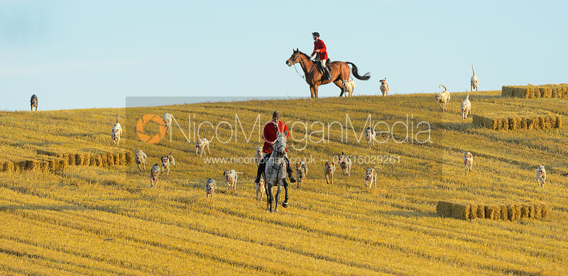 Andrew Osborne MFH - The Cottesmore Hunt at Furze Hil, Tuesday 29th August 2017.