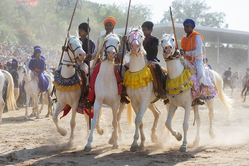 Nihang Sikh Warriors Arrive at the Horse Games at the Annual Holla Mohalla Festival