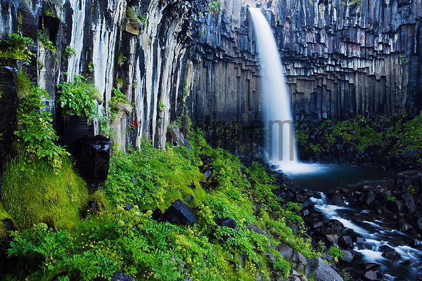Svartifoss (Black Falls) Waterfall, Skaftafell National Park, Iceland